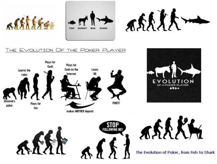 Evolution of poker: from ape to man, from fish to shark