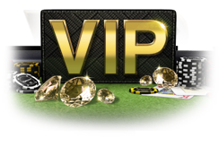 VIP Club